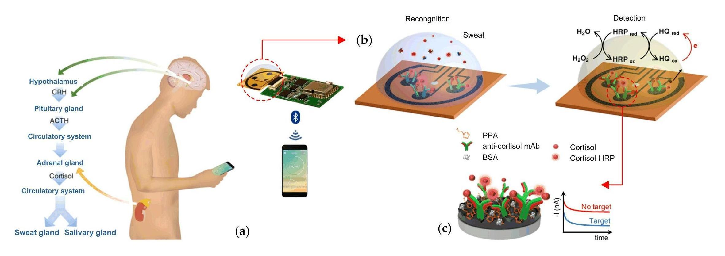 Graphene-based wireless remote control of you through your cell phone